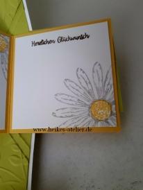 heike-schwaab-heikes-atelier-stampin-up-daisy-margarite-gänseblümchengruß-geburtstag-karte-verpackung-workshops-euskirchen-2