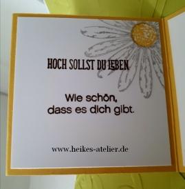 heike-schwaab-heikes-atelier-stampin-up-daisy-margarite-gänseblümchengruß-geburtstag-karte-verpackung-workshops-euskirchen-4